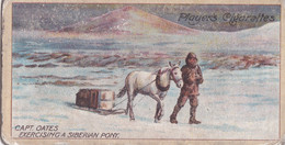 Capt Oates With Siberian Pony -  Polar Exploration 2nd 1916 - Players Cigarette Card - Antarctic - Wills