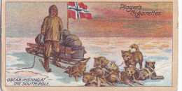25 Oscar Wisting, Norway, At South Pole -  Polar Exploration 2nd 1916 - Players Cigarette Card - Antarctic - Antique - Wills