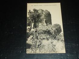 DRUYES - L'ANCIENNE TOUR DU GUETTEUR - 89 YONNE (B.V) - Sonstige Gemeinden