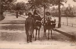 Vichy  Promenade à Anes Sur Les Quais De L'Allier - Donkeys