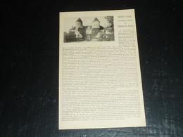 DRUYES - HORRIFIQUE HISTOIRE DU CHATEAU DU BOULAY - 89 YONNE (B.V) - Sonstige Gemeinden