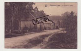 Belvaux S/Lesse (le Vieux Moulin 1617) - Rochefort