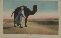 Algérie - Désert - Scene & Tipi