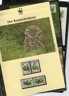 1994 Aruba WWF Kaninchenkauz/Burrowing Owl Komplettes Kapitel 4 **, 4 FDC, 4 MK + Beschreibung - Unused Stamps