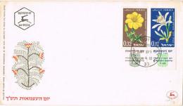 42092. Carta F.D.C. JERUSALEM (Israel) 1960. Flowers, Flores - FDC