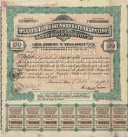 Titre Ancien - Plantaciones Del Nord Este Argentino Sociedad Anónima - Titulo De 1927 - - Agricoltura