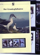 2003 Südgeorgien/South Georgia WWF Graukopfalbatros/Albatross Komplettes Kapitel 4 **, 4 FDC, 4 MK + Beschreibung - Unused Stamps