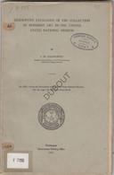 Buddhist Asiatic Art - Cataloque - I.M. Casanowicz - Washington 1921 (V487) - Asien