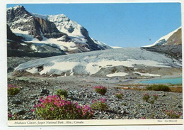 AK 03757 CANADA - Alberta - Jasper National Park - Athabasca Glacier - Jasper