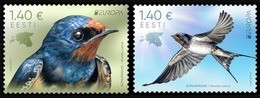 "ESTONIA /ESTLAND /EESTI /ESTONIE - EUROPA 2019 -NATIONAL BIRDS.-""AVES - BIRDS - VÖGEL -OISEAUX""- SERIE De 2 TIMBRES - 2019"