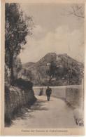 310-Calatabiano-Catania-Sicilia-Veduta Del Castelloe Viandante Solitario - Catania
