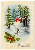 BUON NATALE - BAMBINO NELLA PINETA - 1955 - Vedi Retro - Santa Claus