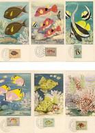 6 Cartes Postales Maximum Les Poissons De Mozambique Série Complète De 1955 - Fish & Shellfish