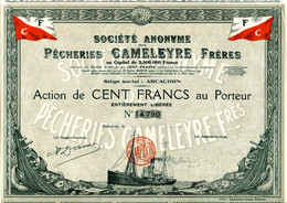 PÊCHERIES CAMELEYRE FRÈRES (Arcachon) - Navigazione