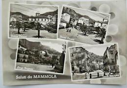 484) SALUTI DA MAMMOLA REGGIO CALABRIA VEDUTINE CARTOLINA VIAGGIATA 10.07.1960 - Reggio Calabria