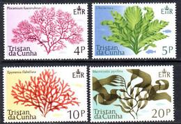 Tristan Da Cunha 1975 Sea Plants Set Of 4, MNH, SG 196/9 - Tristan Da Cunha