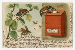 Insectes. Hannetons.lettre à La Poste. - Insects