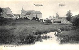 Sosoye - Panorama (animée G.H. Edit 1907) - Anhée