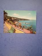 Italia-campania-sorrento-panorama E Punta Del Capo-fg-1964 - Altre Città