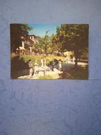Italia-toscana-chianciano Terme-sorgente S.elena-parco-fg-1967 - Altre Città