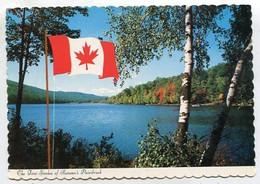 AK 04043 CANADA - Modern Cards