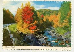AK 04051 CANADA - Ontario - Travelers Paradise - Modern Cards