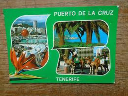 "Espagne , Tenerife , Puerto De La Cruz , ""  Diversos Aspectos "" - Tenerife"