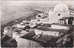 M005 AGADIR - PORT FOUNTI - MARABOUT DE SIDI BOUKNADEL - Agadir