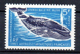 Col24 Taaf Terres Australes N° 22 Neuf XX MNH  Cote 31,00 Euro - Ongebruikt