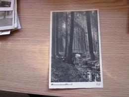 Sonnendurchbruch Stengel Postcards - Ohne Zuordnung