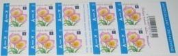Boekje 99** Tulipe Bakeri (eu) Lilac Wonder - Carnet 99 MNH - 10 X 3872** - Pour L'Europe. - Markenheftchen 1953-....