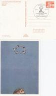 DPP 19/15  X. Kunstausstellung Der DDR - Joan Cozacu - Spaßvögel - Tempera, Berlin 1085 - Privatpostkarten - Gebraucht