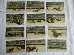 QP - Lote 12 Cartes - Corrida / Amphithéâtre De Nîmes / Lot Mixte  (neuf) - 5 - 99 Karten