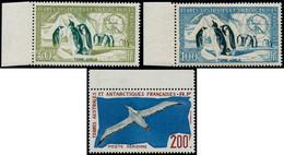 ** TERRES AUSTRALES - Poste Aérienne - 2/4, Tous Bdf: Manchots & Goéland - Unclassified