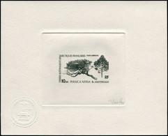 EPA TERRES AUSTRALES - Poste Aérienne - 60, épreuve D'artiste En Noir, Signée Gauthier: Le Phylica Nitida - Unclassified