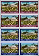 ** KUWAIT - Non Dentelés - 806/07, 2 Blocs De 4 Non Dentelés (tirage 150): Agriculture - Kuwait