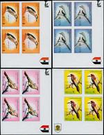 ** LIBYE - Poste - 573/77, Blocs De 4 Non Dentelés, Cdf (tirage 400): Oiseaux - Libië