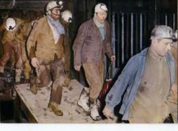 La Mine En Activite Sortie De Cage A La Remontee Au Jour - Bergbau