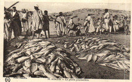Maroc - Marrakech - Agadir - La Pêche Journalière - F 0399 - Agadir