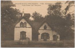 LOT_CP0008 1st Orval 258 (5+5ct) De BRASSCHAET POLYGONE Villa Alpenroos Pension Vers LIEGE Photo François MERXEM Merksem - Covers & Documents