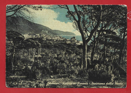 CARTOLINA VG ITALIA - SPOTORNO (SV) - Riviera Di Ponente - Panorama Dalla Pineta - 10 X 15 - 1953 - Savona