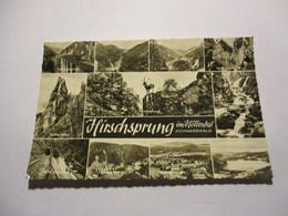 AK Hirschsprung Im Hollental - Vari