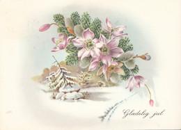 BL176. Danish Greetings Postcard. Flowers. Christmas Rose, Pussy Willow, Fir. - Non Classificati