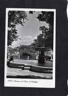 105044       Portogallo,  Lisboa,  Jardin  De S. Pedro De Alcantara,  NV - Lisboa