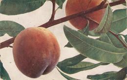 """Fruit. Peaches""Nice Old Vintage German Postcard - Altri"