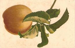 """Fruit. Apple""Nice Old Vintage German Postcard - Altri"