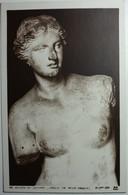 Musée Du Louvre Vénus Milo, Vénus Accroupie Et Têtede Jeune Homme (3 Cartes) - Pittura & Quadri