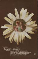 FANTAISIE - Marguerite Talisman D'amour (lot De 2 Cartes) - Fiori
