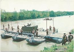 AA2830/31 Esercito Italiano - Genio Pontieri - M113 Co Portiera Kruppman / Non Viaggiata - Altri