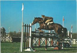 AA2832 Esercito Italiano - Sport - Equitazione / Non Viaggiata - Altri